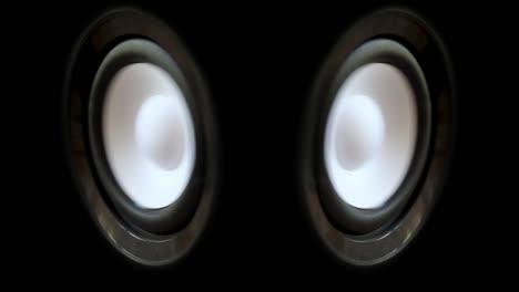 White-Speaker1