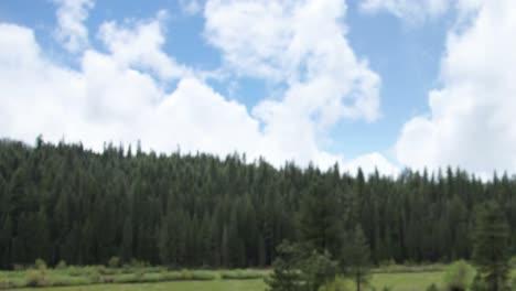 Yosemite-04