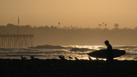 Close-up-surfer-silhouette-getting-out-of-the-water-during-sunrise-at-Surfers-Point-in-Ventura-California