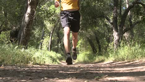 Low-angle-of-man-trail-running-in-the-forest-on-the-Ventura-River-Preserve-in-Ojai-California