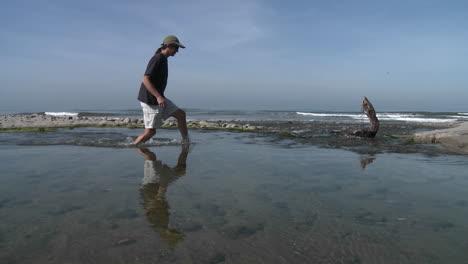 Panorámica-Del-Hombre-Caminando-Por-El-Agua-En-El-Estuario-Del-Río-Ventura-En-Surfers-Point-En-Ventura-California