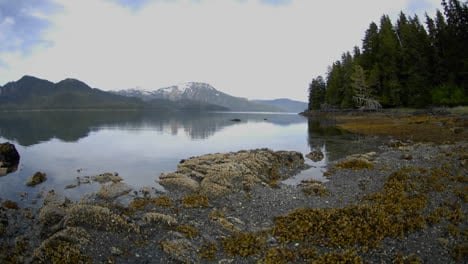 Fast-time-lapse-of-the-tide-retreating-on-Pond-Island-next-to-Kelp-Bay-off-of-Baranof-Island-in-Southeast-Alaska