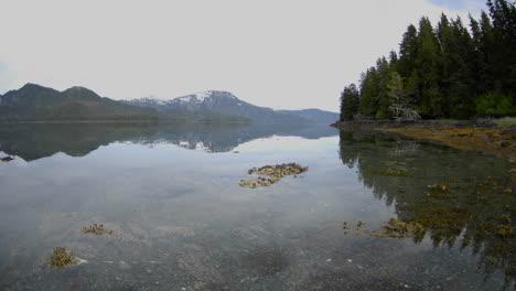 Lapso-De-Tiempo-De-La-Marea-Retrocediendo-En-La-Isla-Del-Estanque-Junto-A-La-Bahía-De-Kelp-Fuera-De-La-Isla-De-Baranof-En-El-Sureste-De-Alaska