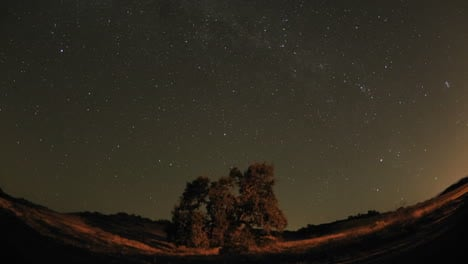 Wide-night-time-lapse-of-star-trails-and-Valley-Oak-Tree-during-a-new-moon-in-Oak-View-California