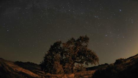 Lapso-De-Tiempo-Nocturno-De-Senderos-De-Estrellas-Y-Roble-Del-Valle-Durante-Una-Luna-Nueva-En-Oak-View-California