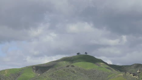 Time-lapse-of-a-developing-storm-over-two-trees-above-Ventura-California