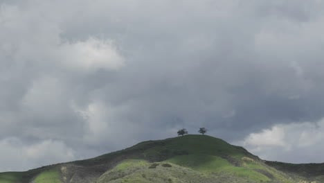 Time-lapse-motion-of-a-developing-storm-over-two-trees-above-Ventura-California