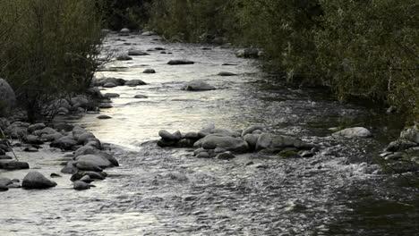San-Antonio-Creek-confluence-on-the-Ventura-River-in-Casitas-Springs-California
