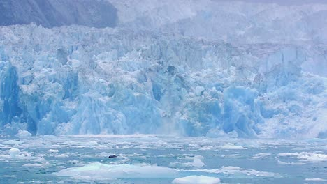 Calving-and-shooter-from-the-tidewater-South-Sawyer-Glacier-in-Tracy-Arm-Fords-Terror-Wilderness-in-Southeast-Alaska