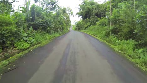 Point-of-view-time-lapse-driving-an-interior-road-through-a-forest-on-Santa-Cruz-Island-in-Galapagos-Ecuador