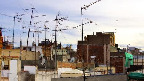 Ariels-Rooftops2