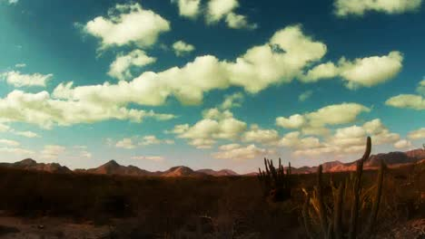 Baja-Desert-03
