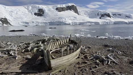 Panorámica-Del-Histórico-Barco-De-Agua-Y-Huesos-De-Ballena-En-El-Puerto-De-Mikkelson-En-La-Antártida