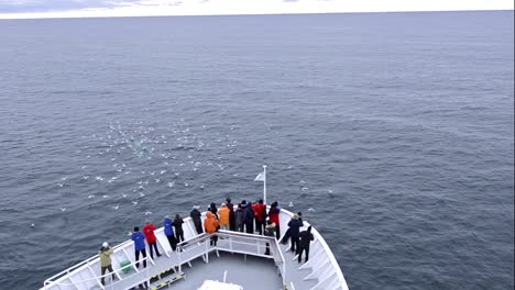 Tourists-watching-humpback-whale-lunge-feeding-over-the-continental-shelf-off-of-Spitzbergen-in-Svalbard-Norway