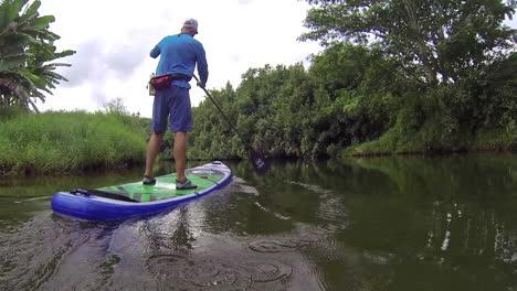Un-Hombre-Rema-Una-Tabla-De-Remo-Por-Un-Río-En-Kauai-Hawaii-1