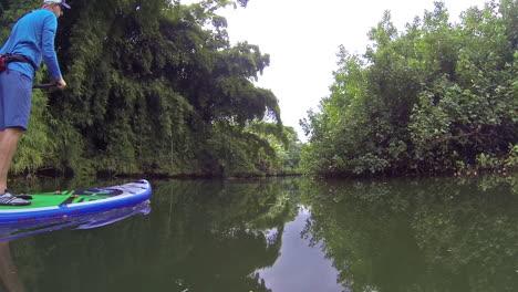 Un-Hombre-Rema-Una-Tabla-De-Remo-Por-Un-Río-En-Kauai-Hawaii-2