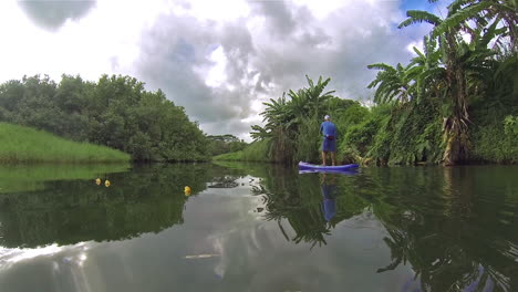 Un-Hombre-Rema-Una-Tabla-De-Remo-Por-Un-Río-En-Kauai-Hawaii-3