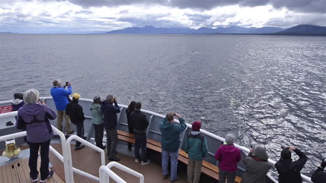 Tourists-admire-killer-whales-from-a-boat-in-Alaska