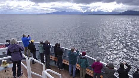 Los-Turistas-Admiran-Las-Orcas-Desde-Un-Barco-En-Alaska