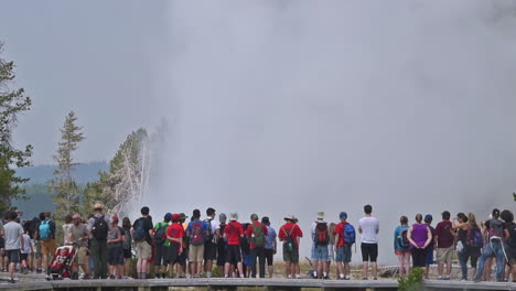 A-large-group-of-tourists-observe-the-eruption-of-Old-Faithful-geyser-in-Yellowstone-National-Park