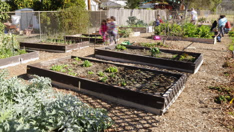 Timelapse-of-volunteer-group-building-raised-beds-in-a-school-garden-at-San-Antonio-Elementary-School-in-Ojai-California