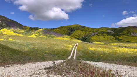 Carrizo-Plain-Road-Time-Lapse-De-Nubes-California-Wildflower-Superbloom-Con-Fotógrafo