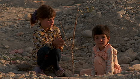 Children-play-with-a-dying-tree-on-a-hillside-in-Kabul-Afghanistan