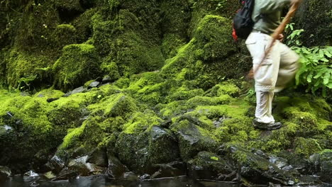 A-man-hikes-with-a-walking-stick-across-a-green-mossy-landscape