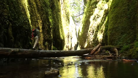 A-man-hikes-with-a-walking-stick-across-a-fallen-tree-in-a-deep-gorge
