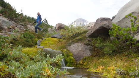 A-hiker-and-his-dog-walk-though-a-wilderness-area-and-cross-a-mountain-stream