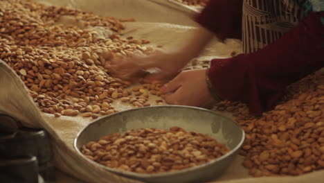 Women-work-in-a-factory-in-Afghanistan-producing-and-packaging-dried-almonds-4
