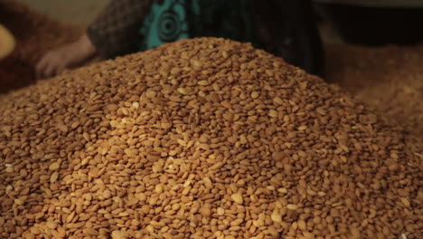 Women-work-in-a-factory-in-Afghanistan-producing-and-packaging-dried-almonds-6