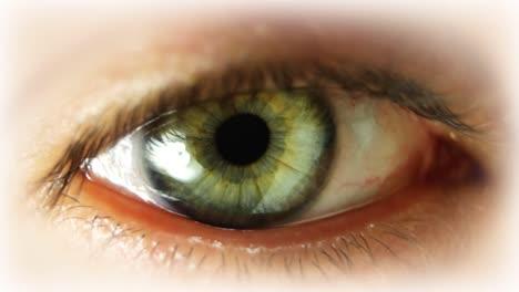 Big-Eye-00