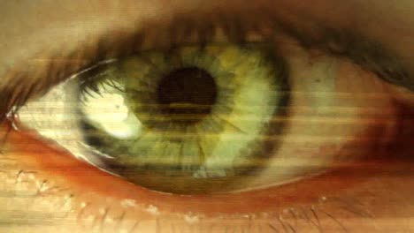 Big-Eye-04
