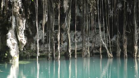 Cenote-07
