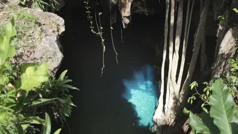 Cenote-Crystal-07