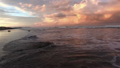 Olive-Ridley-sea-turtles-making-their-way-en-masse-into-the-ocean-at-sunset