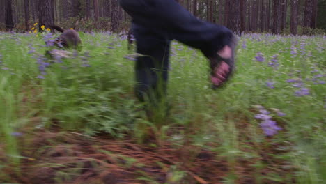 POV-shot-from-a-low-level-of-a-man-and-his-dog-walking-through-a-forest
