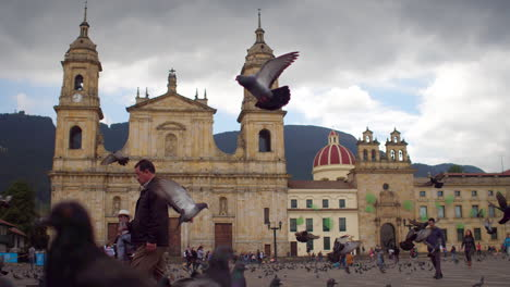 Pigeons-crowd-Plaza-Bolivar-in-downtown-Bogota-Colombia-3