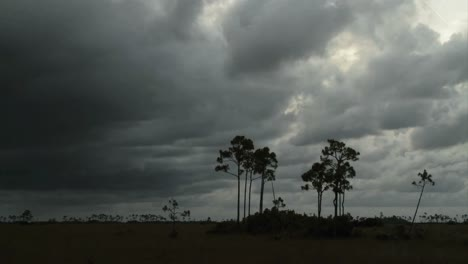 A-big-storm-blows-in-over-the-Florida-Everglades-in-time-lapse