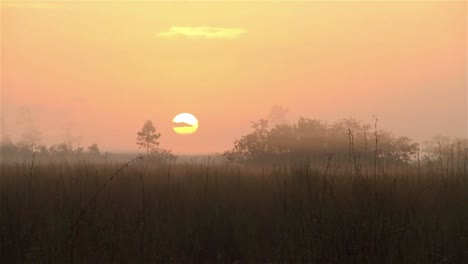 Sunrise-over-the-Florida-Everglades