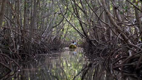 Two-men-row-a-canoe-through-the-Florida-Everglades