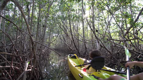 A-father-and-child-row-a-kayak-through-the-mangroves-in-the-Everglades