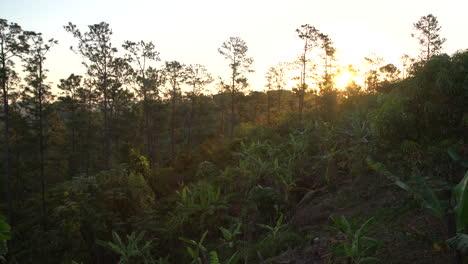Panning-shot-at-dawn-of-Vinales-National-park-Cuba
