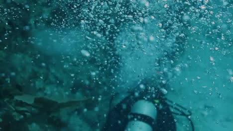 Cozumel-Dive-04