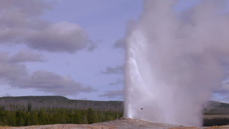 Old-Faithful-Erupts-At-Yellowstone-National-Park