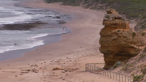 A-Person-Walks-Along-A-Lonely-But-Scenic-Beach-1