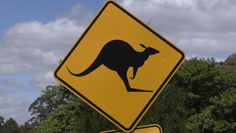 A-Kangaroo-Cross-Road-Sign-Stand-Near-Trees