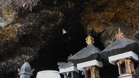 Los-Murciélagos-Vuelan-Dentro-Y-Fuera-De-Una-Gran-Cueva-En-Bali-Indonesia