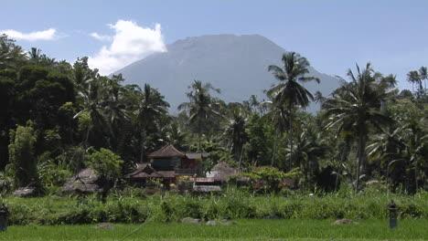 Una-Estructura-De-Madera-Se-Asienta-En-Un-Paisaje-Tropical